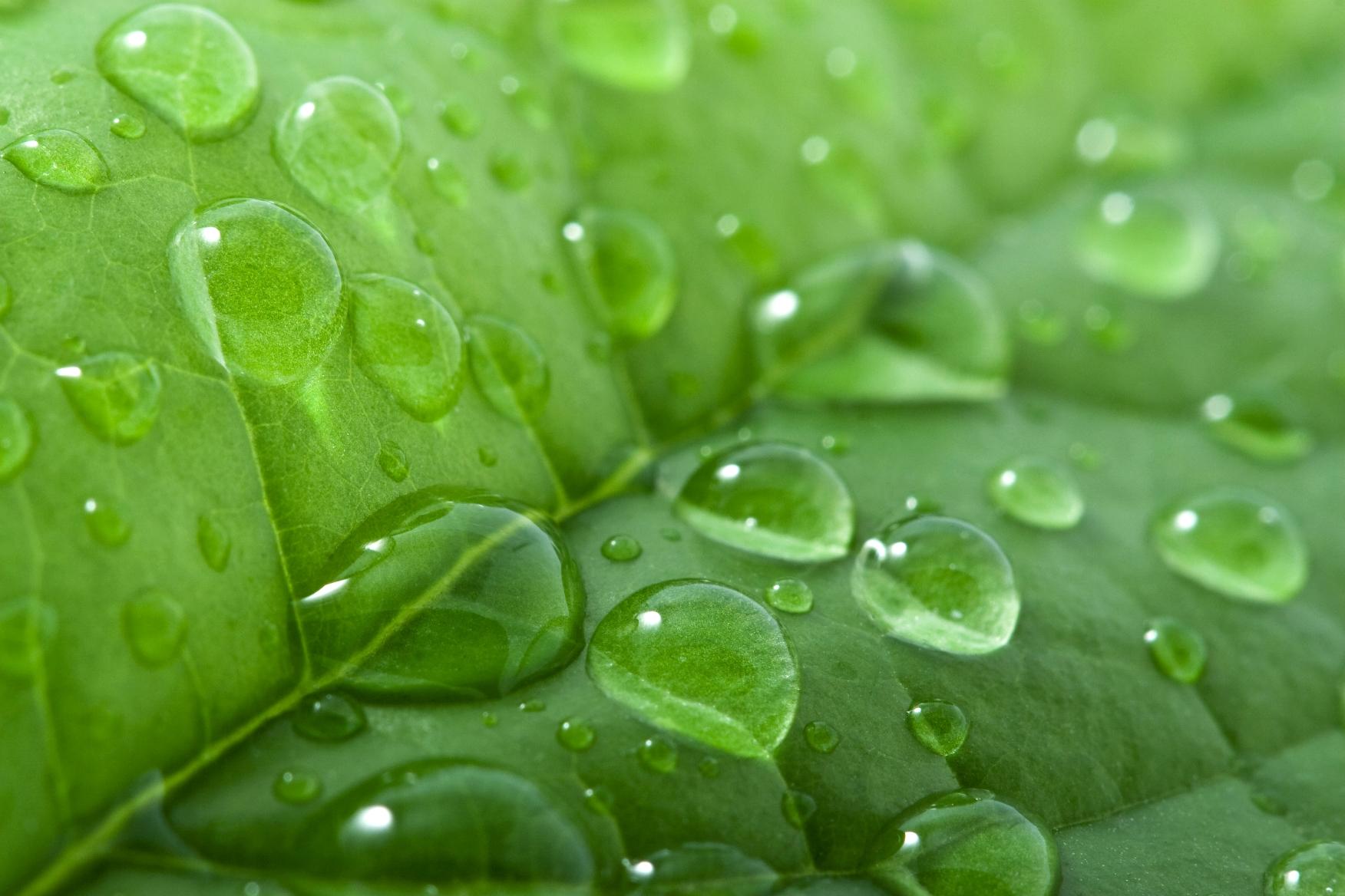 El Día Mundial del Agua y la necesidad de prestar atención a nuestra huella hídrica
