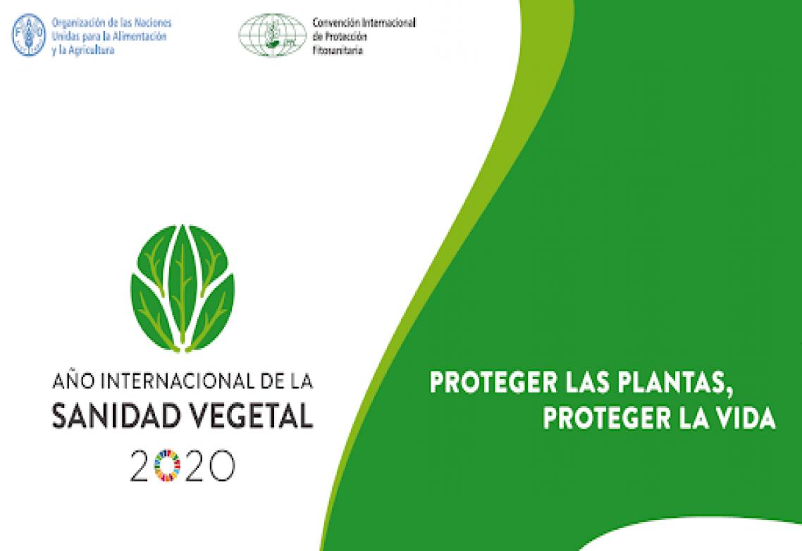 2020, un año para poner en valor el papel de los productos fitosanitarios