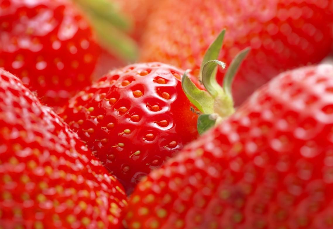 El azufre para uso agrícola: ¿Qué beneficios aporta en el crecimiento y protección de cultivos de frutos rojos?