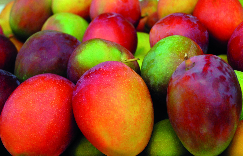 Fruiters (sub) tropicals